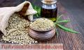 Cuáles son los beneficios del Essential CBD Extract para la piel