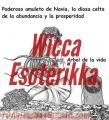 PROTECCIONES ESOTÉRICAS ESPECIALIZADAS .