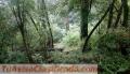 Venta de terreno en la Huerta San Agustín para Rancho de crianza o para casa de bosque.